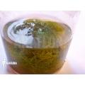 Wasserschlauch 'Utricularia minor'