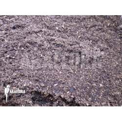 Venus flytrap boosting peat